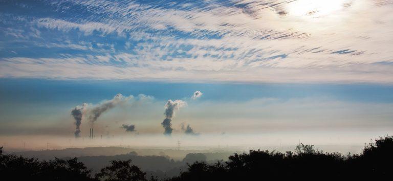 stockage du carbone dans les sols